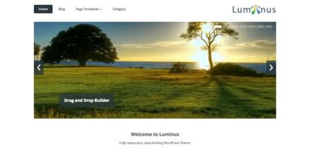 Luminus 450x224 75 Best Free Wordpress Themes of 2014 Till July