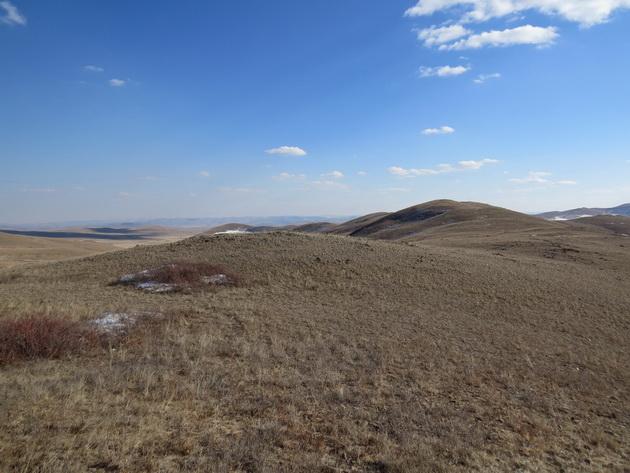 Холмистые степи Дульдургинского заказника ранней весной. Фото О.А. Горошко