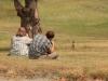 Фотографируем луговых собачек