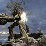 Trees – The Ultimate Eco Warrior
