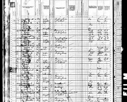 US Federal Census (1880)