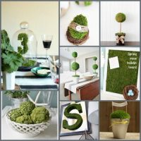 Decorating with moss