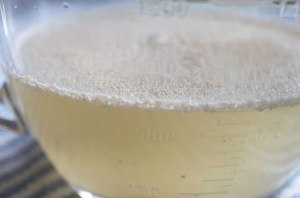 foamy yeast in water with honey