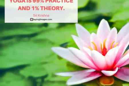 Lotus flower yoga quotes spotgymyoga quotes on lotus flower path decorations pictures full mightylinksfo