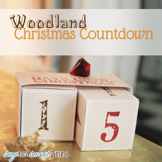 Sweet Rusting Christmas Countdown! Made entirely out of paper from an easy free printable! | Saynotsweetanne.com | #rustic #Christmas #printable