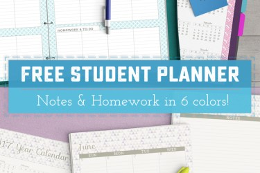 FREE June '16 - June '17 Printable Student Planner - Perfect for back to school, getting organized, graduation gifts and more. There's space to track homework, class schedule add ons, and even a teacher's version with lesson planning. | saynotsweetanne.com
