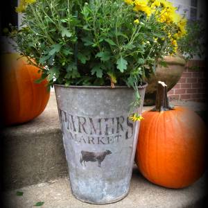 Farmers Market galvanized tin bucket
