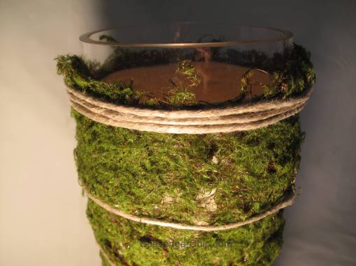 Moss hurricane Lamp diy