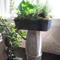 Indoor Herb Planter