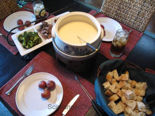 Upcyled Turkey Fryer, indoor smore cooker or diy fondue pot