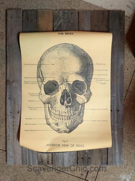 Easy Skull, Pallet Wood Halloween Decor-