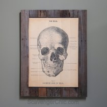Pallet Wood and Skulls