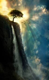 Tree & Waterfall