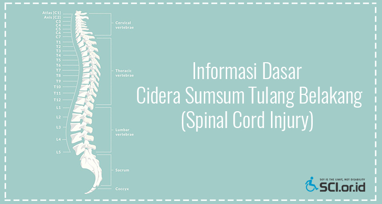 Tentang Spinal Cord Injury