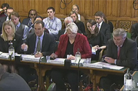 Health Select Committee - screenshot