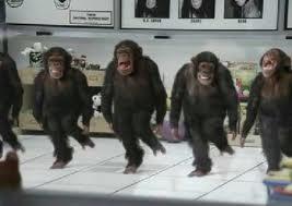 monkeys dancing