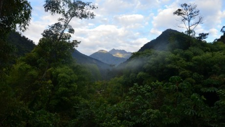 Peru: Global warming may spell doom for the world's most bio-diverse ecosystem