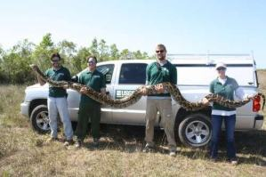 record_breaking_python