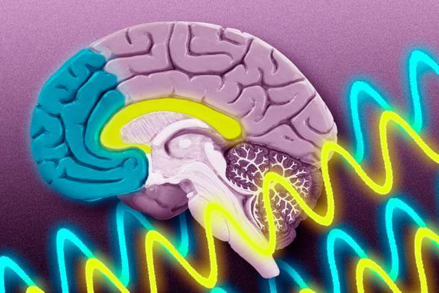 Cancer genes turned off in deadly brain cancer