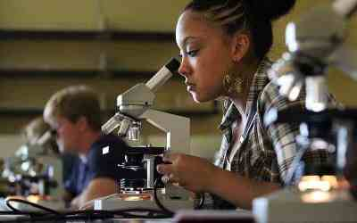Male biology students consistently underestimate female peers