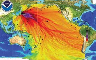 Radioactive cesium fallout on Tokyo from Fukushima concentrated in glass microparticles