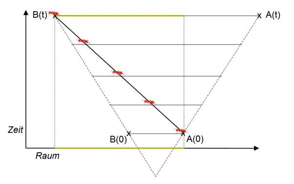 Eine Ameise kriecht im expandierenden Universum von A (Start zur Zeit 0) nach B (Ankunft zu Zeit t). Während der Weg vor und hinter der Ameise wächst, ist für den Restweg nur die Expansion vor ihr relevant, für die Entfernung zwischen A und B zur Zeit t aber die gesamte Expansion. Der von der Ameise zurückgelegte Weg (gelb) ist daher länger als die Entfernung A(0)-B(0), aber kürzer als A(t)-B(t).