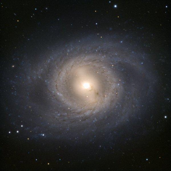 Spiralgalaxie M95. Schön ist der zentrale Balken und die Staubwolken im ihn umgebenden Ring zu erkennen. Bild: ESO, CC BY 4.0.