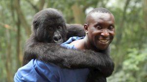 Virunga on Netflix