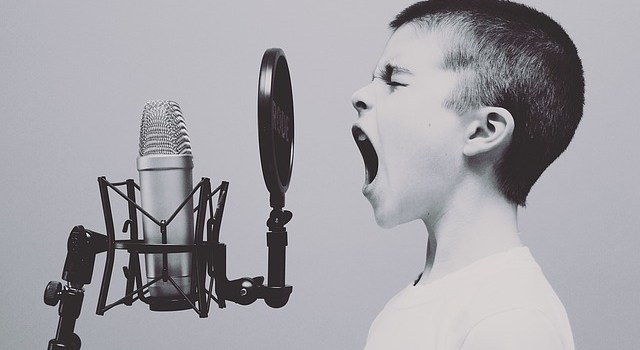 What's in a song? The science of singing