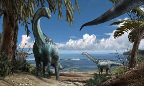 Tito, il dinosauro scoperto alle porte di Roma, è vissuto 112 milioni di anni fa | Sfruttiamo il web