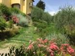 San Gimi Sovestro steps up