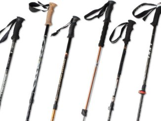 Boy Scout Image -- Hiking Poles