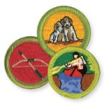 Boy Scout Image -- Merit badges