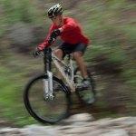 Scout Mountain Biking