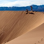 Death Valley Sandboarding