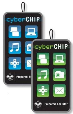 cyberchip