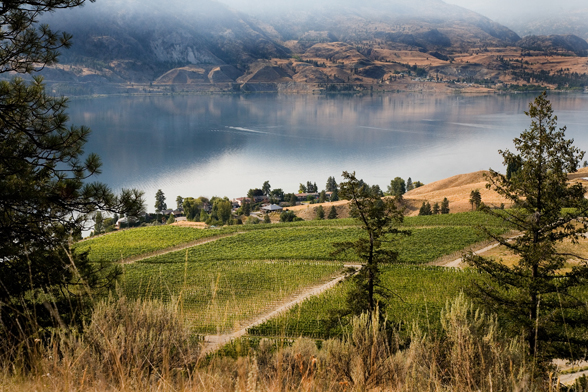 "GOODS | BC's Painted Rock Named ""Winery Of The Year"" At International Wine Awards"