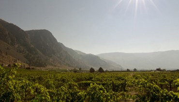 Similkameen Independent Winegrowers