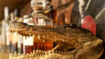 BARTIFACTS | Making Sense Of The Assorted Artifacts Adorning The Bar At Mamie Taylor's