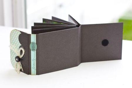 Mini Fold Book