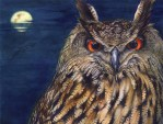 Freebie | Owl Lover 2015 Calendar
