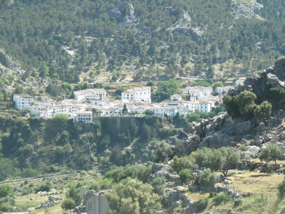 View of Grazalema, enveloped by greenery, from below the town.