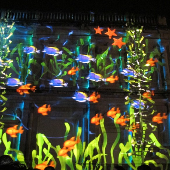 and lots of brightly-coloured fish, reminding us of the new aquarium.