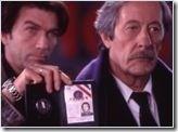 boeufs thumb Aventuriers et français ? 2ème Partie 1995 2005