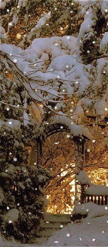 winter wonderlalnd snow