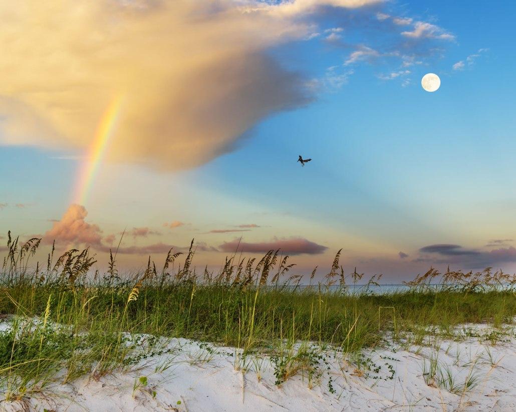Biloxi Home Rentals Vacation
