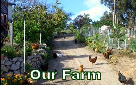 our farm web banner
