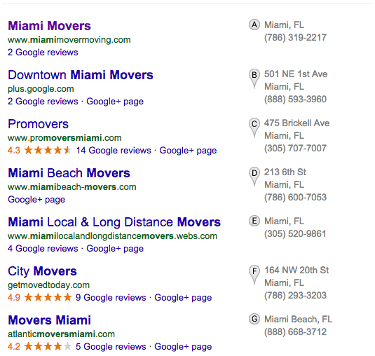 Miami Movers Pigeon