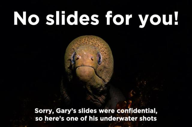 Gary's underwater eel shot (since he can't share his slides)