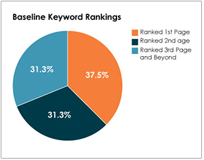 Dermatology Case Study - Baseline Keyword Rankings Chart  - Search Influence
